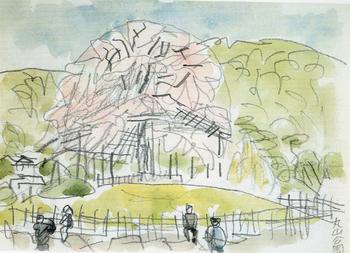 1967丸山公園.jpg