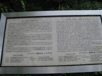 176-3.jpg