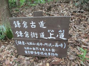 七国山4 のコピー.jpg