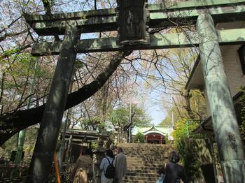 亀岡八幡宮2.jpg
