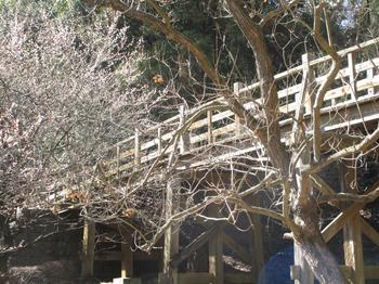 原峰公園3 のコピー.jpg