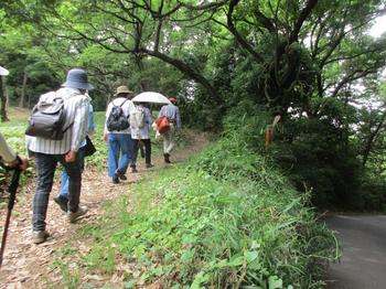 古道入口 のコピー.jpg