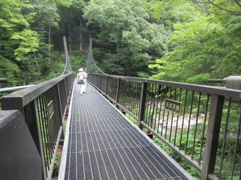 木の俣渓谷2巨岩吊り橋.jpg