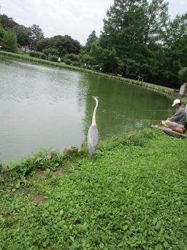水城公園5.jpg