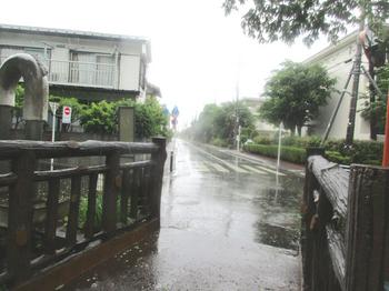 鎌倉橋から街道をみる のコピー.jpg