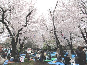 飛鳥山公園2 のコピー.jpg