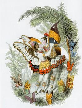 J.J.グランヴィル「蝶々」.jpg